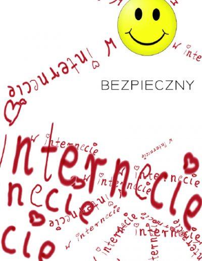 internet293
